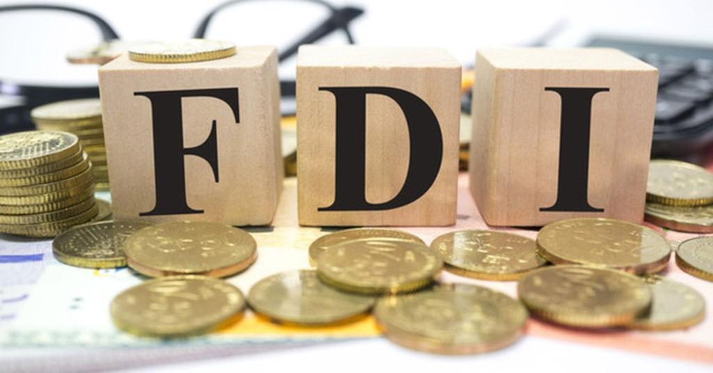 Doanh nghiệp FDI là gì? Vai trò và đặc điểm | TaxPlus